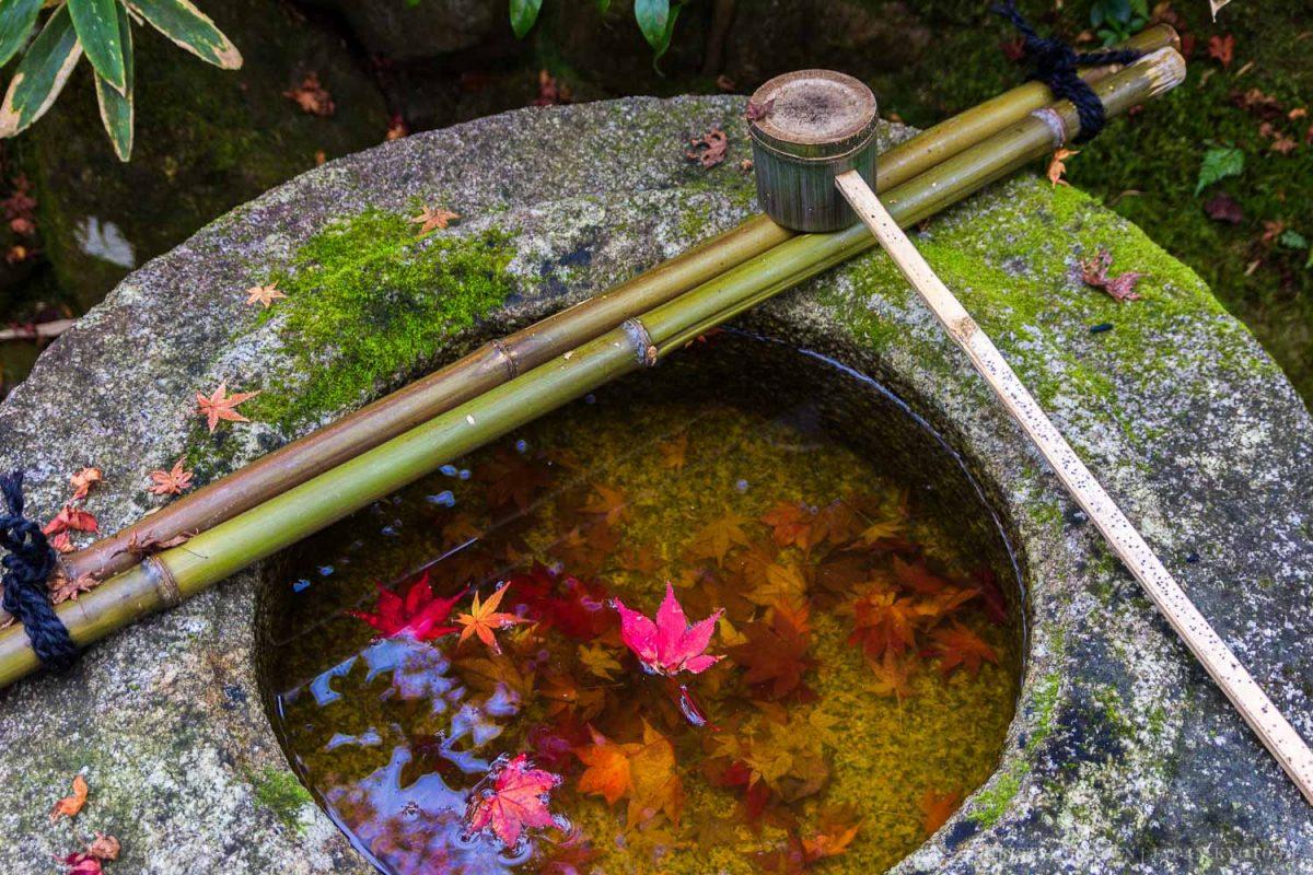 Kotoin, Subtemple of Daitokuji, Kyoto / Japan, Kansai, Kioto, Kotoin, Kyoto, Tempel, Temple, お寺, 京都, 仏教, 仏閣, 日本, 関西, 高桐院