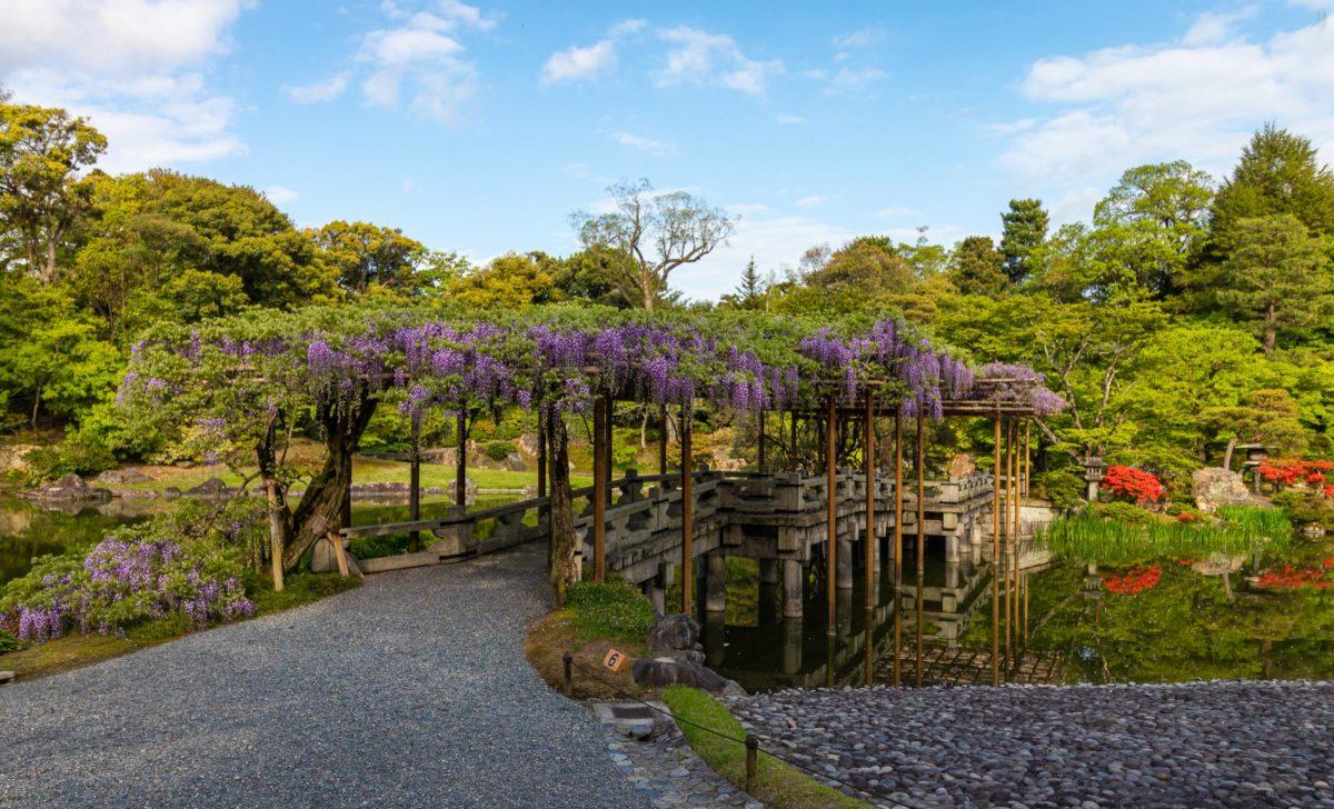 Imperial Palace Sento Gosho, Kyoto / J2019, Japan, Kansai, Kioto, Kyoto, 京都, 日本, 関西