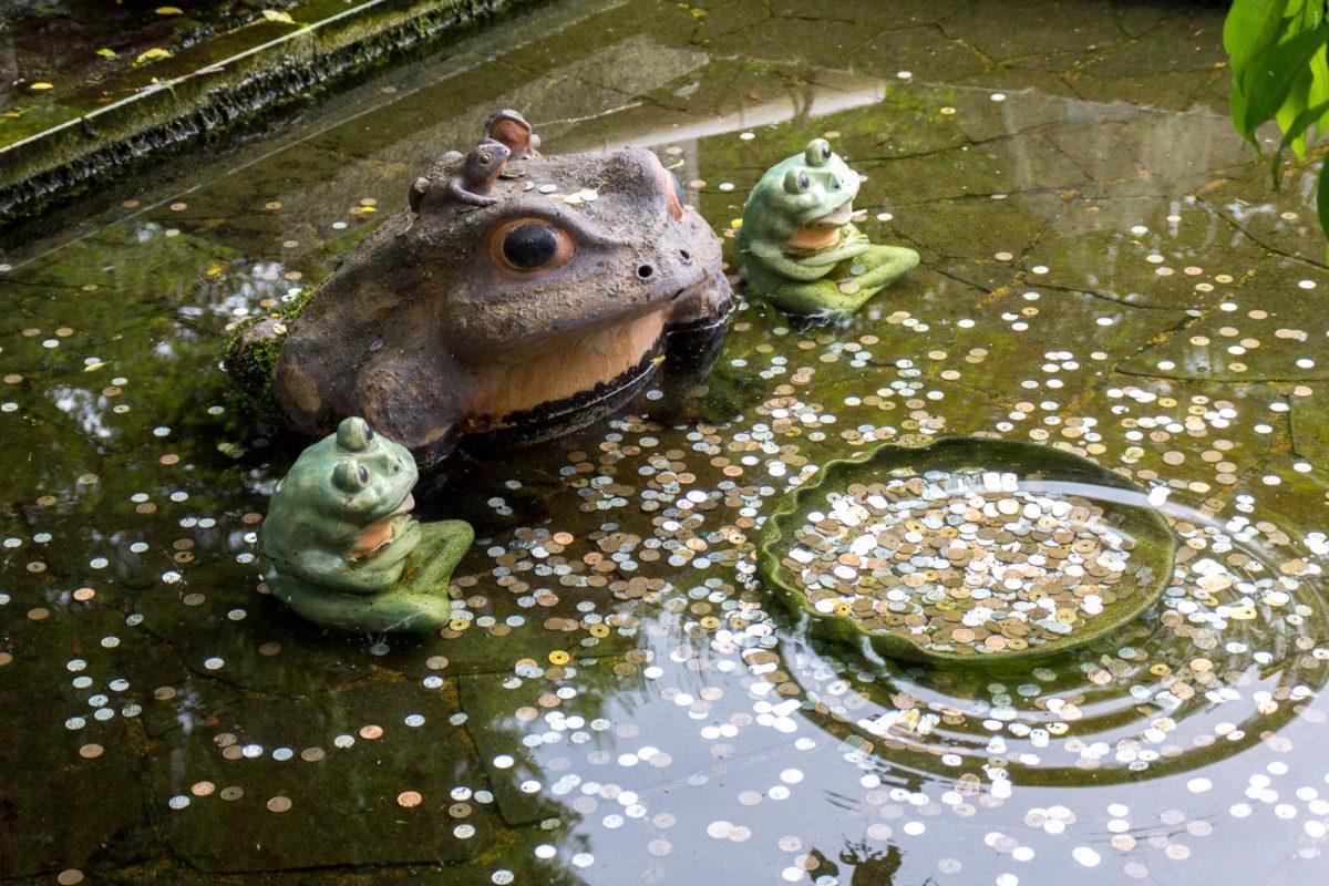 Tenryuji Temple / Animal, Arashiyama, Frosch, J2011-12, Japan, Kansai, Kioto, Kyoto, Tempel, Temple, Tenryuji, Tier, Tiere, frog, お寺, かえる, 京都, 仏教, 仏閣, 動物, 天竜寺, 嵐山, 日本, 蛙, 関西