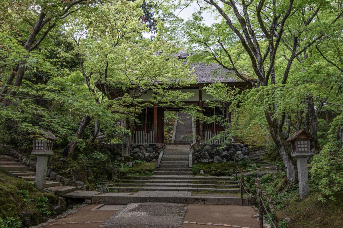 Jojakkoji temple, Kyoto / J2019, Japan, Kansai, Kioto, Kyoto, 京都, 日本, 関西