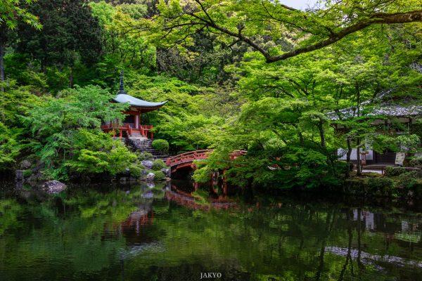 Daigoji temple, Kyoto / J2019, Japan, Kansai, Kioto, Kyoto, 京都, 日本, 関西