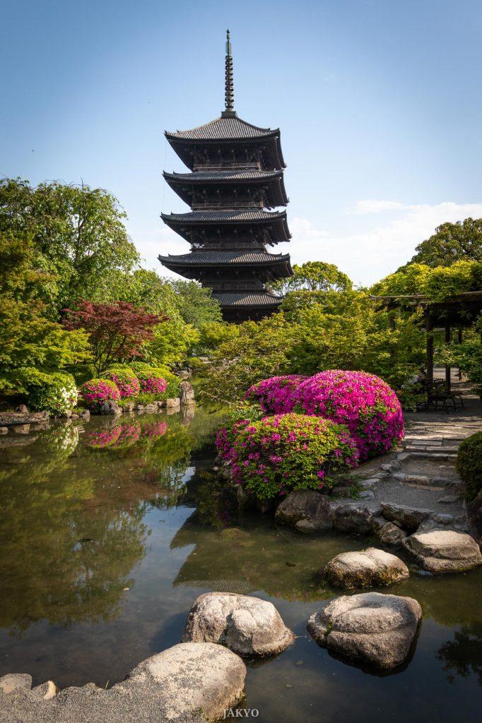 Toji temple, Kyoto / J2019, Japan, Kansai, Kioto, Kyoto, Tempel, Temple, Toji, Tôji, お寺, 京都, 仏教, 仏閣, 日本, 東寺, 関西