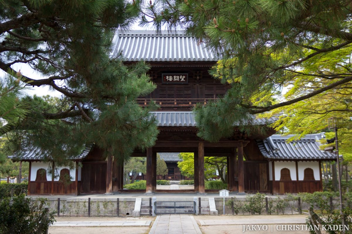 Kenninji temple, Kyoto / J2013, Japan, Kansai, Kenninji, Kioto, Kyoto, Tempel, Temple, お寺, けんにんじ, 京都, 仏教, 仏閣, 建仁時, 日本, 関西