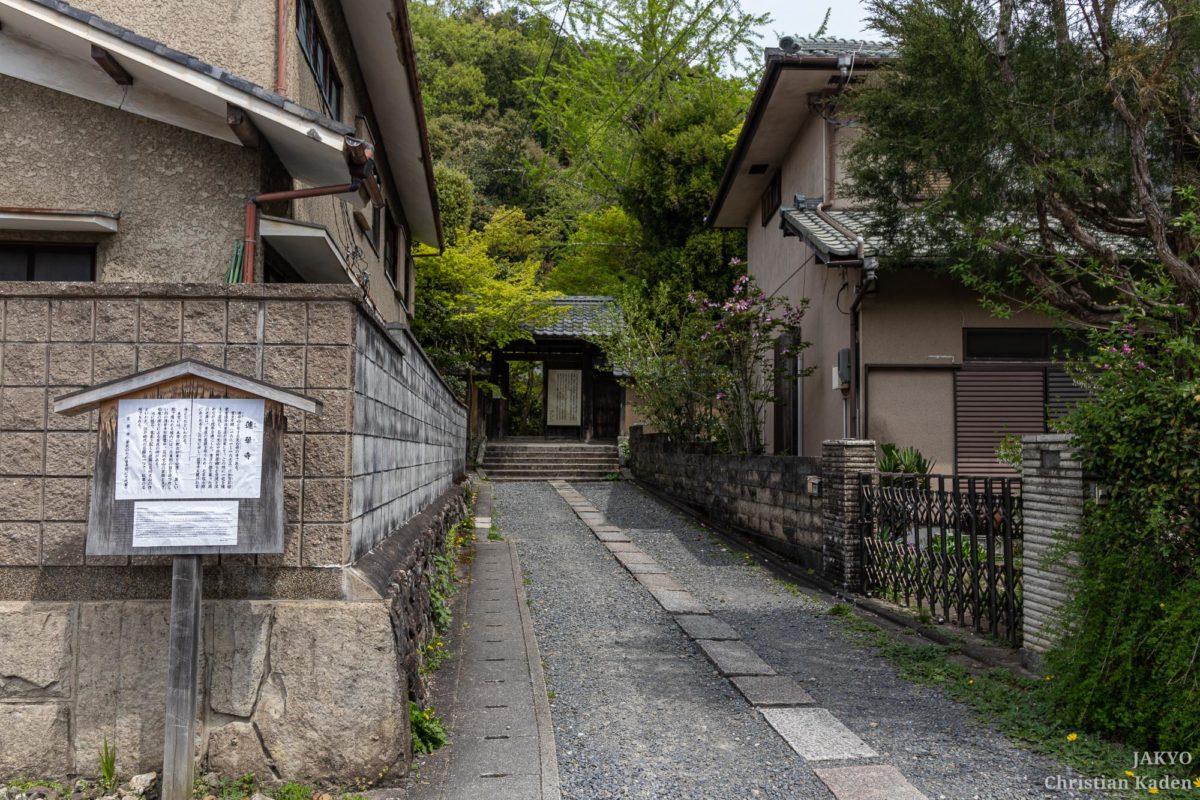 Rengeji temple, Kyoto / J2019, Japan, Kansai, Kioto, Kyoto, 京都, 日本, 関西