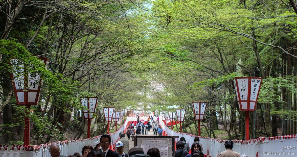 Daigoji temple, Kyoto / Daigoji, J2011-12, Japan, Kansai, Kioto, Kyoto, Tempel, Temple, お寺, 京都, 仏教, 仏閣, 日本, 関西