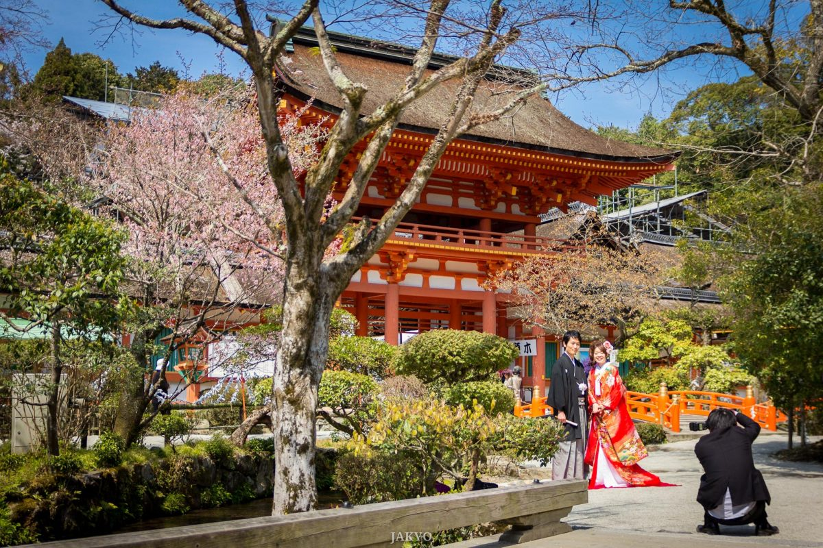 Kamigamo Shrine 2013