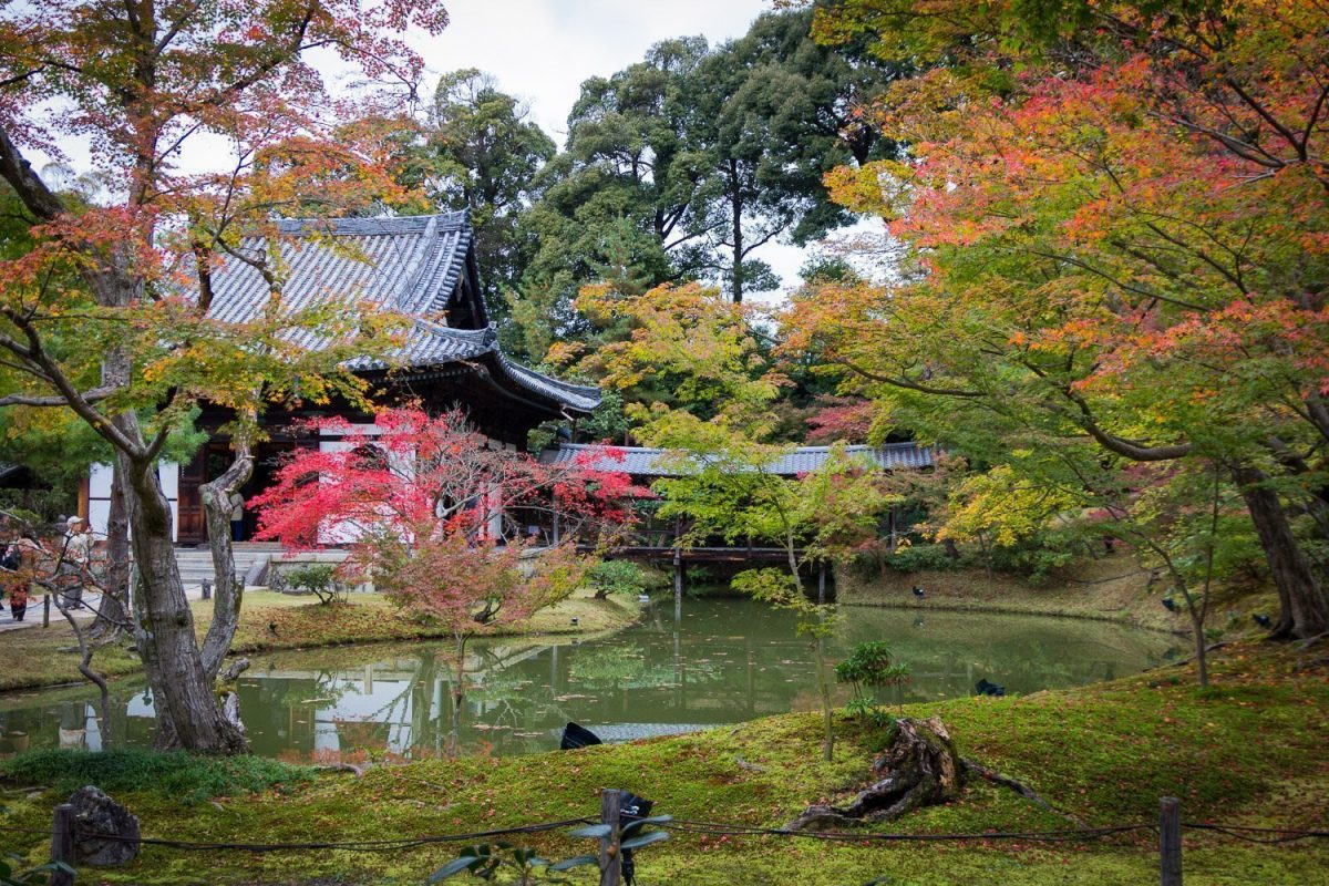 Kodaiji Temple during autumn, Kyoto