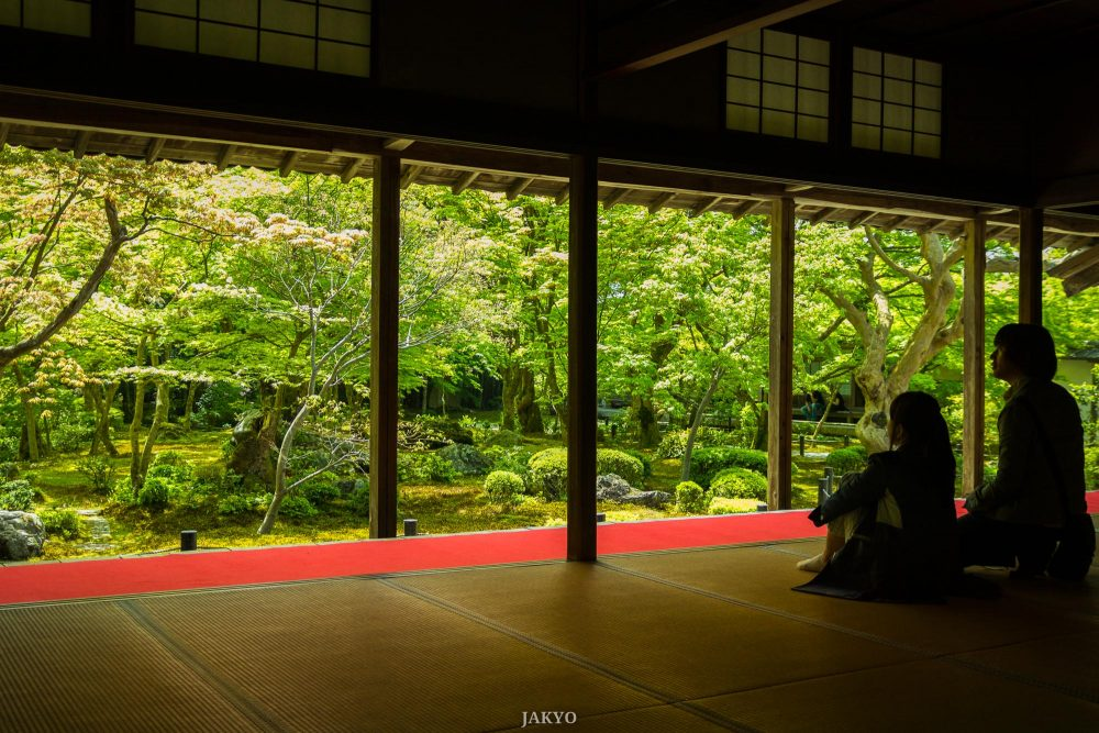 Enkoji Temple, Kyoto / Architecture, Architektur, BeOfJap, Best of Japan, Culture, Enkoji, Grün, Japan, Kansai, Kioto, Kultur, Kyoto, Red, Rot, Rote Wolldecke, Tatami, Tempel, Temple, Teppich, Unterlage, carpet, green, mat, red carpet, rug, お寺, たたみ, みどり, 下敷, 京都, 仏教, 仏閣, 圓光寺, 建築, 建築術, 敷物, 文化, 日本, 日本一番, 毛氈, 畳, 緋毛氈, 赤, 関西